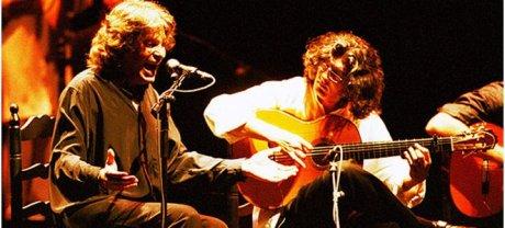 palos-flamencos